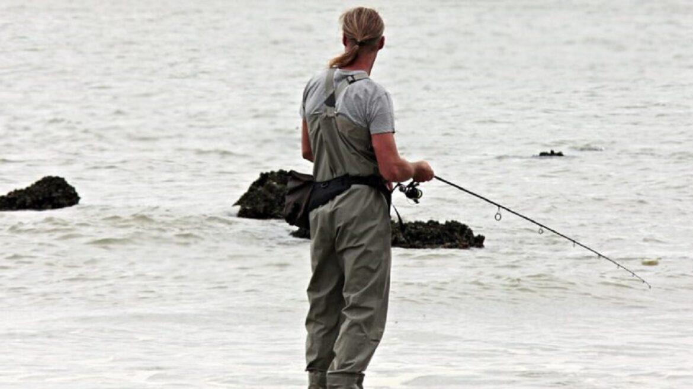Pesci di mare: quali possiamo pescare?